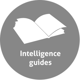 intelligence guides grey