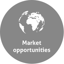 market opportunities grey
